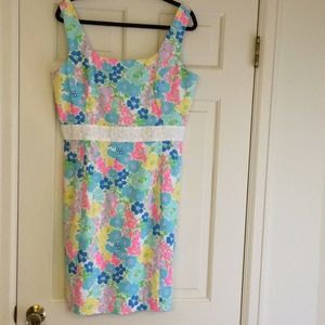 Lilly dress NWT size 14